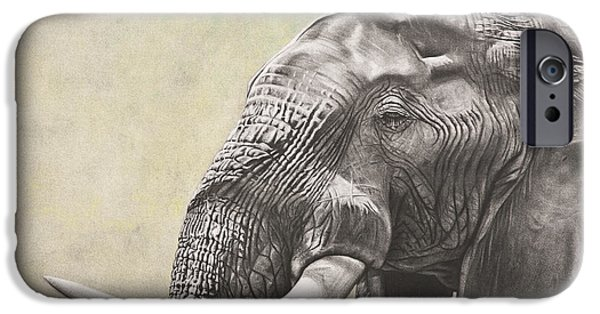 Elephants iPhone Cases - Elephant iPhone Case by Ashleigh Dix