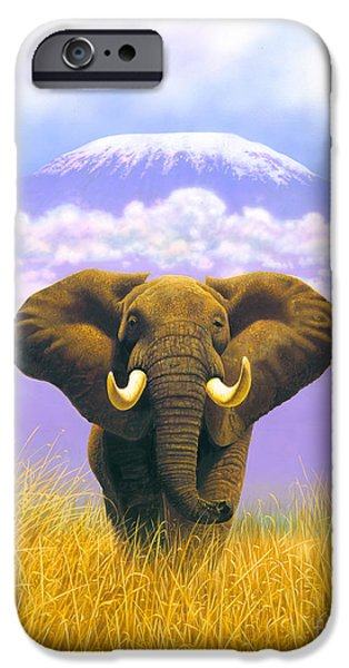 Elephant iPhone Cases - Elephant at Table Mountain iPhone Case by MGL Studio - Chris Hiett