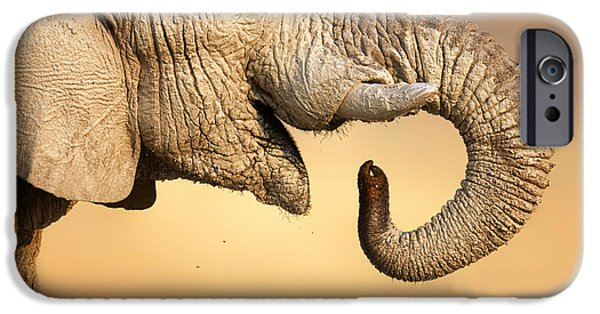 Mouth iPhone Cases - Elephant drinking iPhone Case by Johan Swanepoel