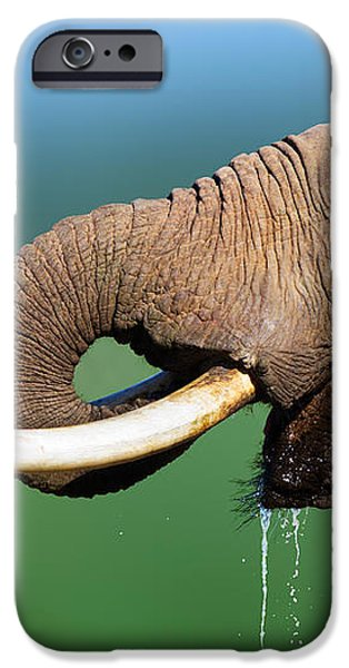 Elephant drinking water iPhone Case by Johan Swanepoel