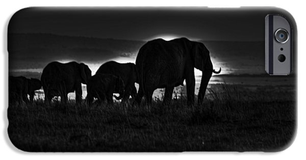 Elephants iPhone Cases - Elephant Family iPhone Case by Aidan Moran
