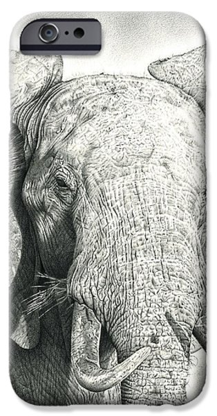 African Animal Drawings iPhone Cases - Elephant iPhone Case by Heidi Vormer