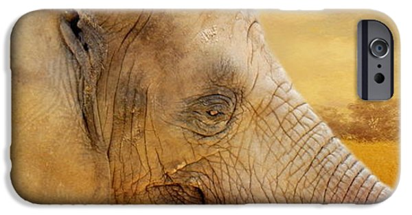 Elephants iPhone Cases - Elephant iPhone Case by Heike Hultsch