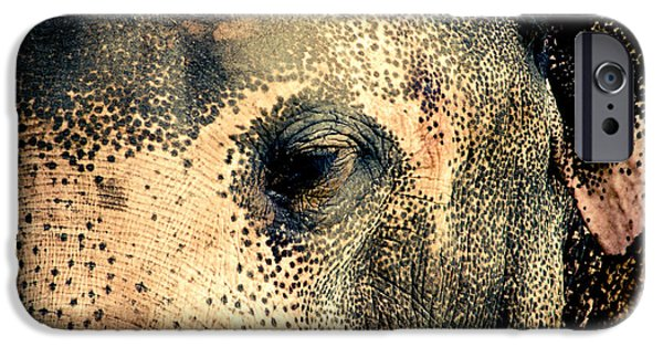Elephants Pyrography iPhone Cases - Elephant iPhone Case by Hemantha Fernando