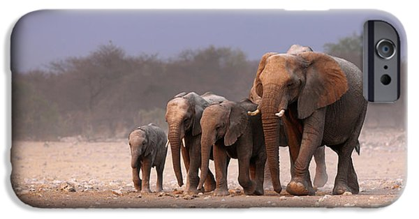 Small iPhone Cases - Elephant herd iPhone Case by Johan Swanepoel