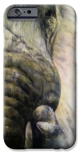Elephants Pastels iPhone Cases - Elephant In Focus iPhone Case by Lucy Hoch