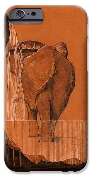 Elephant iPhone Cases - Elephant in river iPhone Case by Juan  Bosco