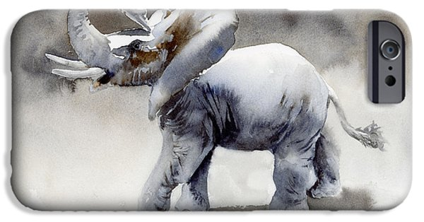 Elephant iPhone Cases - Elephant Light Study  iPhone Case by Amy Kirkpatrick