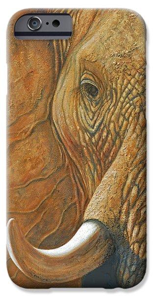 Elephants Pastels iPhone Cases - Elephant Matriarch portrait close up iPhone Case by David Clode