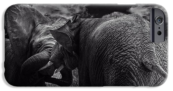 Elephant iPhone Cases - Elephant Playtime iPhone Case by Christine Sponchia