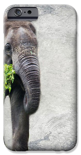 Elephant With A Snack iPhone Case by Tom Gari Gallery-Three-Photography