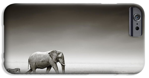 Nobody Photographs iPhone Cases - Elephant with zebra iPhone Case by Johan Swanepoel
