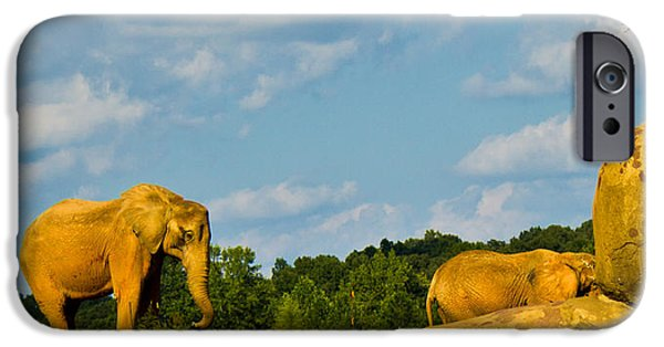 Elephants iPhone Cases - Elephants Among the Rocks. iPhone Case by Jonny D