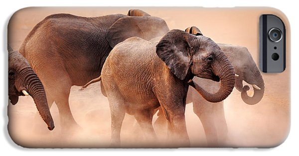 Loxodonta iPhone Cases - Elephants in dust iPhone Case by Johan Swanepoel