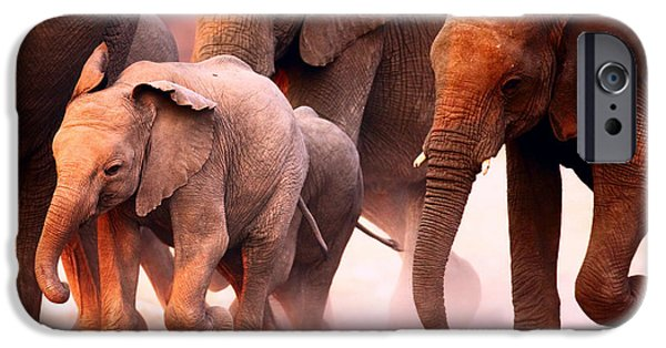 Loxodonta iPhone Cases - Elephants stampede iPhone Case by Johan Swanepoel