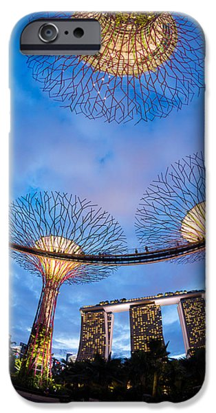 The Tiger iPhone Cases - Elevated Walkway At Gardens By The Bay iPhone Case by Panoramic Images