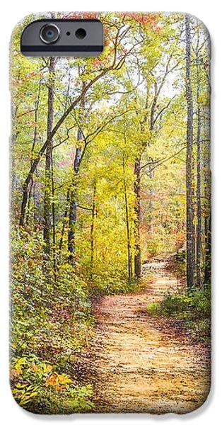 Elfin Forest iPhone Case by Debra and Dave Vanderlaan