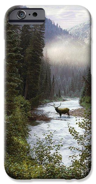 Elk Crossing iPhone Case by Leland D Howard