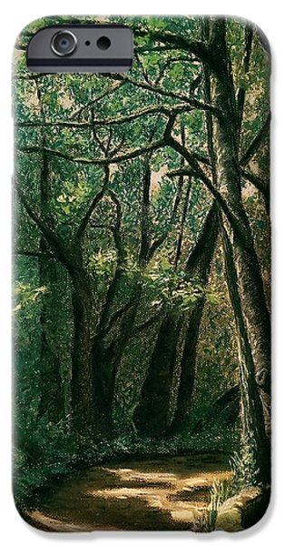 Pathway Pastels iPhone Cases - Ellis Wood iPhone Case by Anne Ingelbach