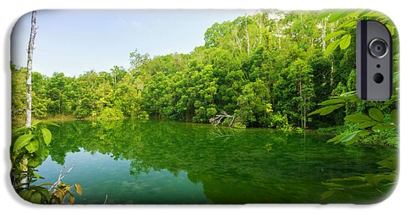 Mangrove Forest iPhone Cases - Emerald Pool iPhone Case by Atiketta Sangasaeng