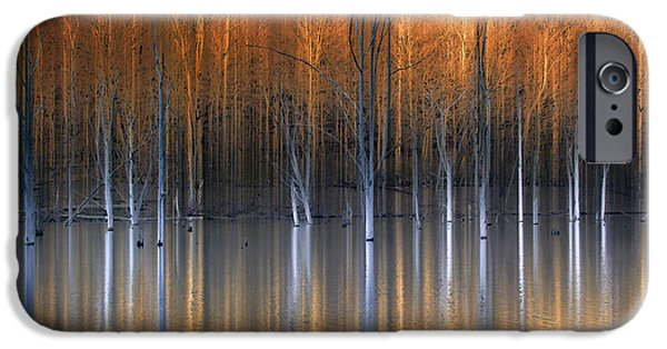 Fall Season iPhone Cases - Emerging Beauties Reflected iPhone Case by Marco Crupi