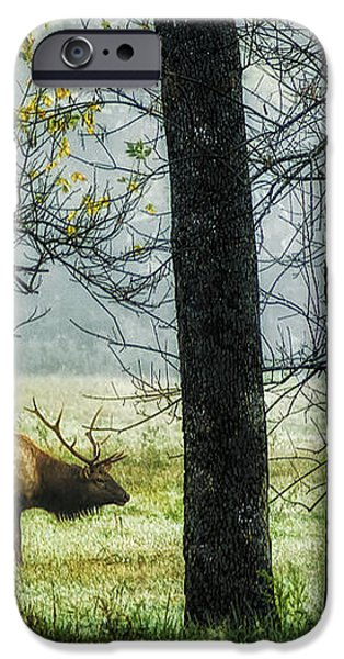 Emerging from the Fog iPhone Case by Priscilla Burgers