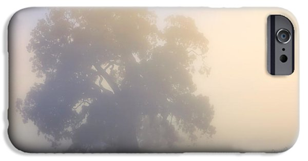 Fog Mist iPhone Cases - Emerging iPhone Case by Mike  Dawson