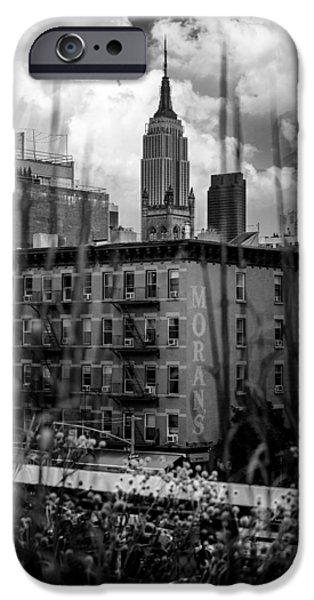 Empire State iPhone Cases - Empire State  High Line View iPhone Case by Ovidiu Rimboaca