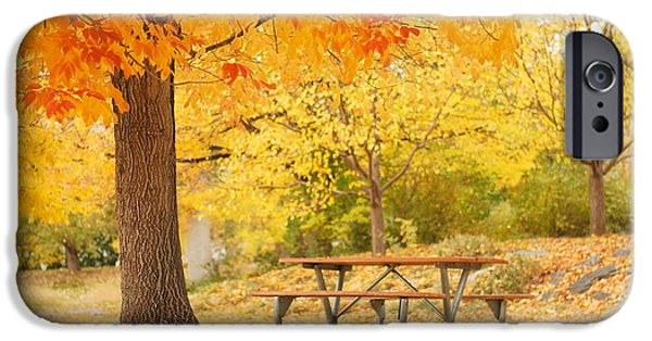 No People Pyrography iPhone Cases - Empty park on a fall day iPhone Case by Yoshiko Wootten