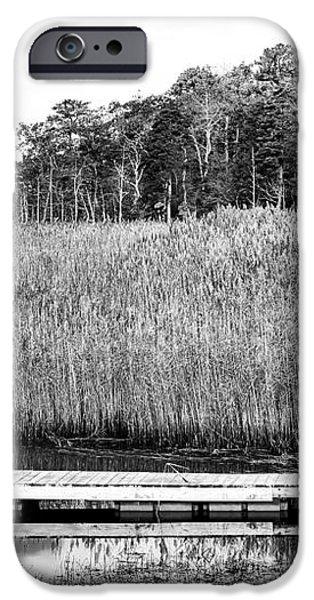 Empty Pine Barrens iPhone Case by John Rizzuto