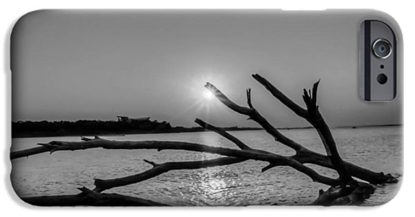 Grapevines iPhone Cases - Empty Sunset iPhone Case by Dado Molina