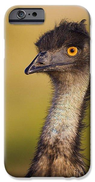 Emu iPhone Cases - Emu iPhone Case by BG Thomson