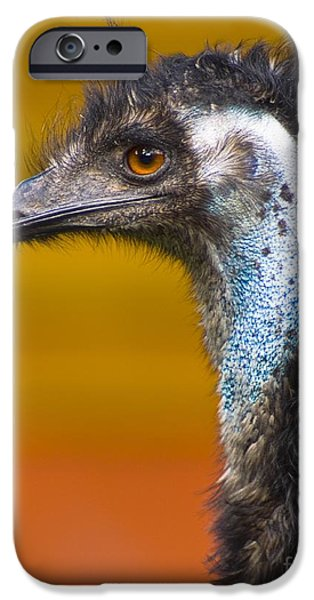 Emu iPhone Cases - Emu iPhone Case by Martyn F. Chillmaid