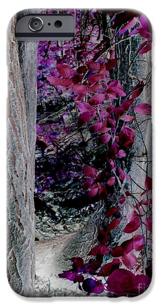 Eerie iPhone Cases - Enchanted Forest iPhone Case by Martin Howard