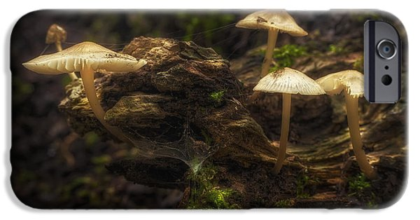 Mushrooms iPhone Cases - Enchanted Forest iPhone Case by Scott Norris