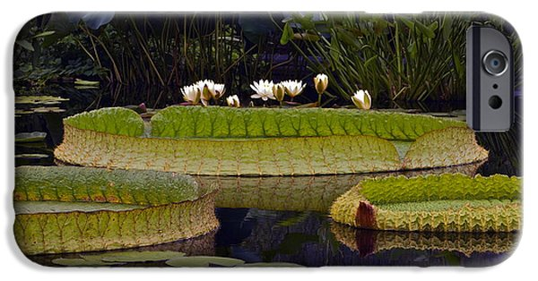 Victoria Cruziana iPhone Cases - Enchanted Water Garden iPhone Case by Byron Varvarigos