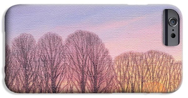 Sheep Grazing iPhone Cases - End Of Day, 2003 Oil On Canvas iPhone Case by Ann Brain