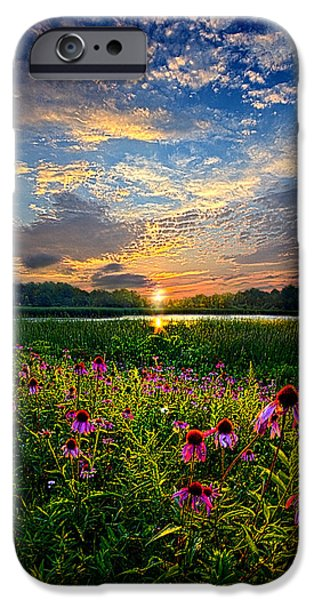Meadow Photographs iPhone Cases - End of the Night iPhone Case by Phil Koch