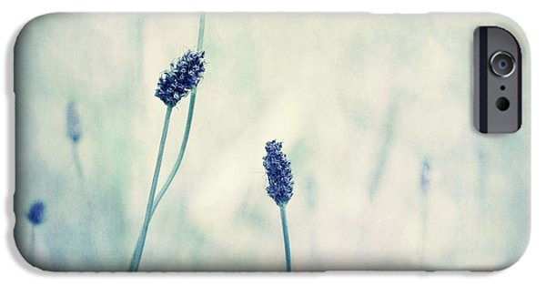 Hue iPhone Cases - Endearing iPhone Case by Priska Wettstein