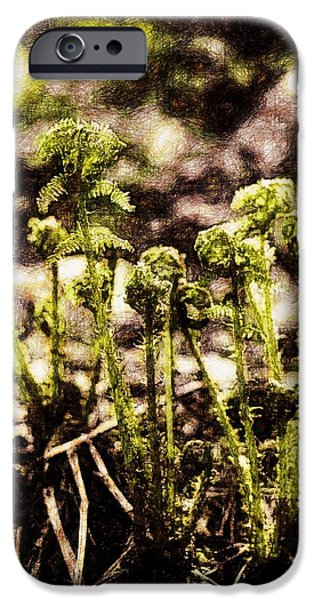 Flora Drawings iPhone Cases - Endgraving Forest 15 iPhone Case by Yevgeni Kacnelson