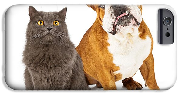 Purebred iPhone Cases - English Bulldog and Gray Cat iPhone Case by Susan  Schmitz