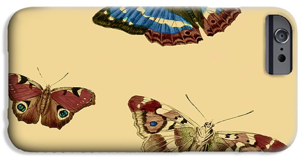 Business Drawings iPhone Cases - English Butterflies iPhone Case by Philip Ralley