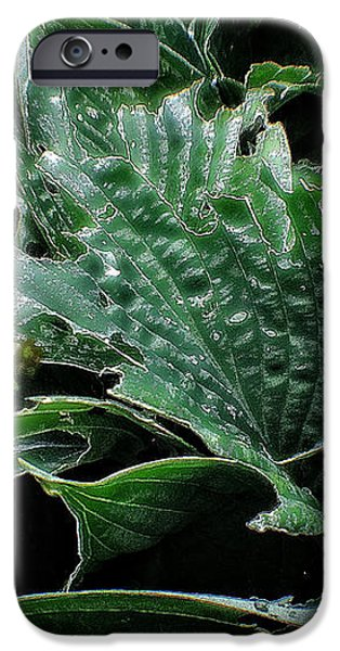 English Country Garden - Series V iPhone Case by Michael Braham