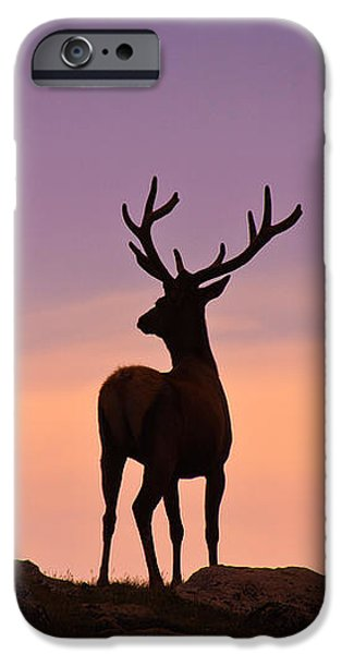 Enjoying the View iPhone Case by Darren  White