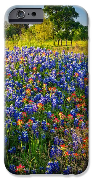 Mound iPhone Cases - Ennis Bluebonnets iPhone Case by Inge Johnsson