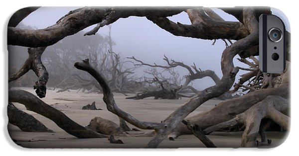 Glynn iPhone Cases - Entanglements iPhone Case by Laura Ragland
