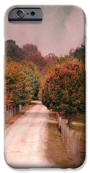 Autumn Scenes Photographs iPhone Cases - Enter Fall iPhone Case by Jai Johnson