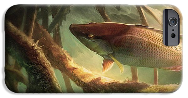Sports Fish iPhone Cases - Entre Mangles iPhone Case by Javier Lazo