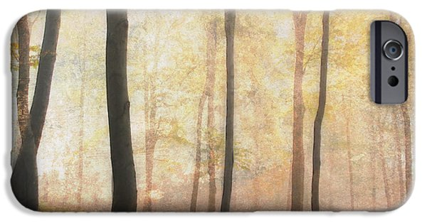 Airbrush Mixed Media iPhone Cases - Equilibrium Of The Forest In The Mist iPhone Case by Georgiana Romanovna