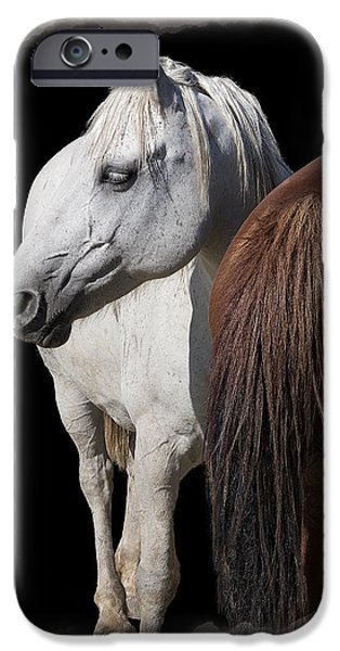 Horse Racing Digital Art iPhone Cases - EQUINE HORSE HEAD and TAIL iPhone Case by Daniel Hagerman
